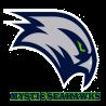 Mystic Seahawks